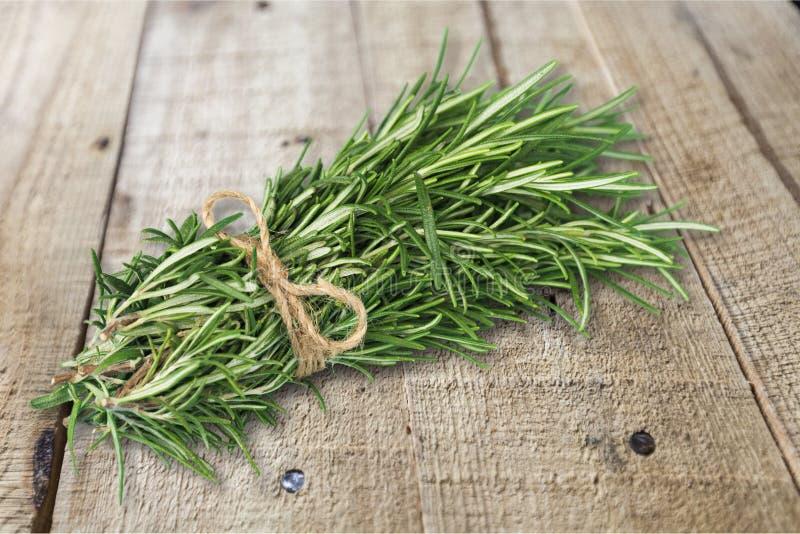 Rosemary. Closeup aroma aromatic background botany branch stock photo