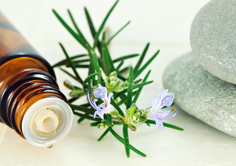 Rosemary-Schmieröl stockfoto