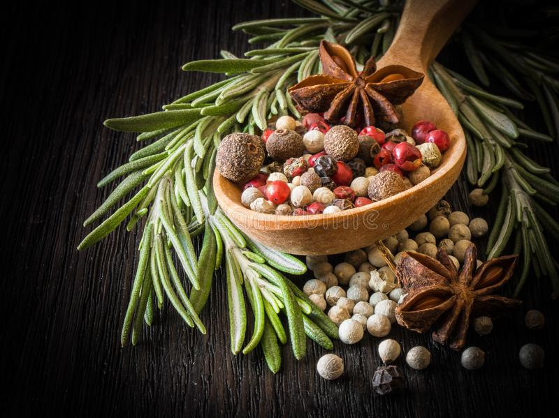 Rosemary, star anise, white pepper, pink pepper. Rosemary, anise, white pepper, pink pepper and star anise on a wooden spoon royalty free stock photo