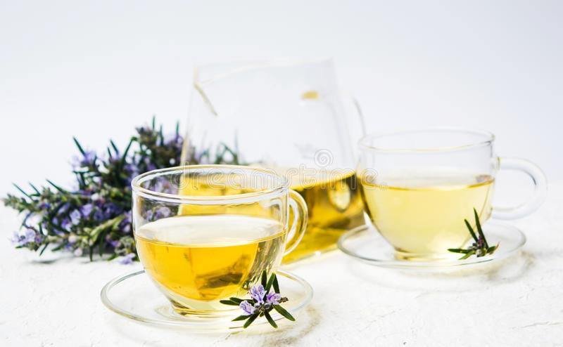 Rosemary tea with fresh plant and blossom stock image