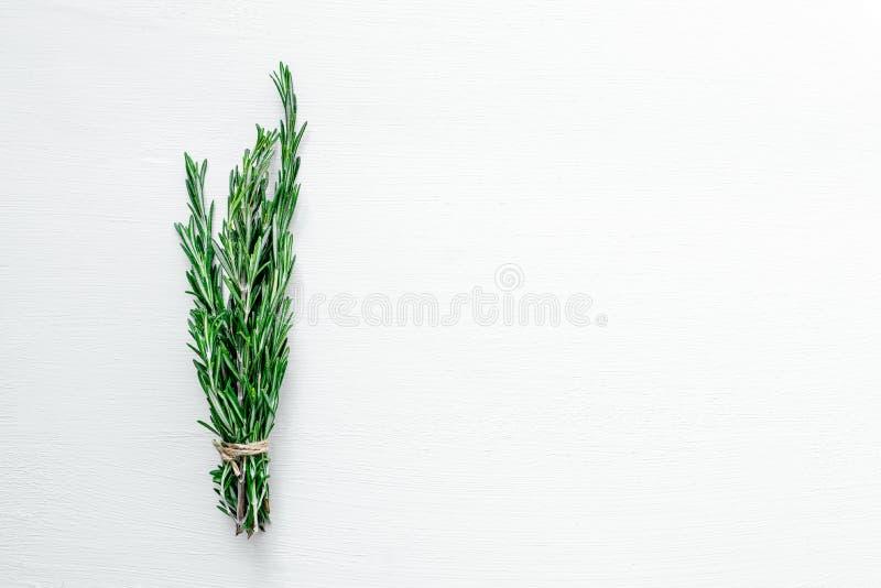 Rosemary verde fresca en un fondo blanco fotos de archivo libres de regalías