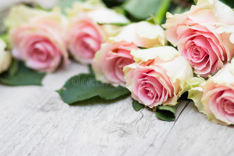 Rosen auf einem hölzernen Hintergrund lizenzfreies stockfoto