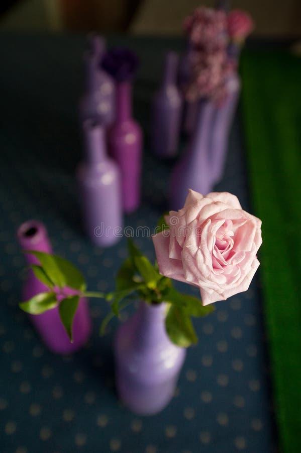 Rosen-Blume in einer farbigen Flasche lizenzfreie stockbilder