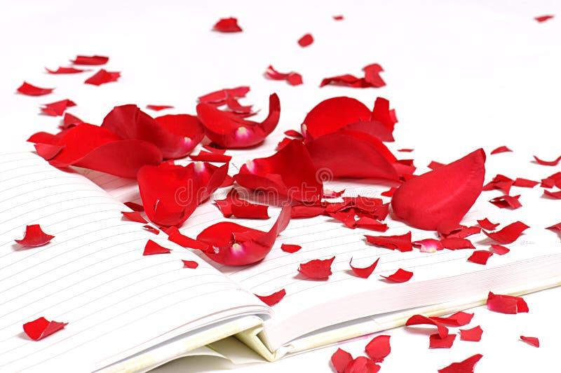 Rosen-Blumenblätter auf dem Notizbuch stockfotos