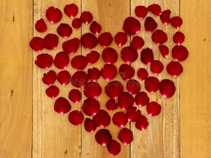 Rosen-Blumenbl?tter vereinbart in einer Herzform stockfotografie
