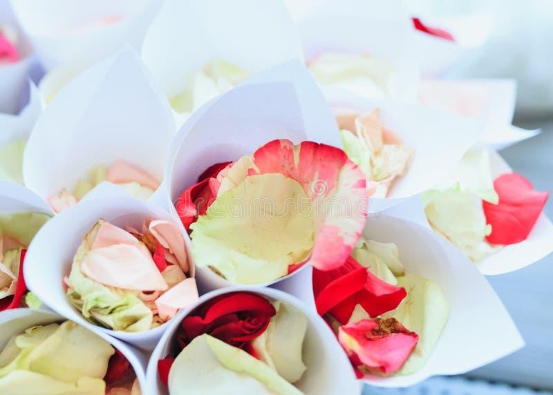 Rosen-Blumenblatt in einem Papierkegel für Hochzeitszeremonie stockfoto
