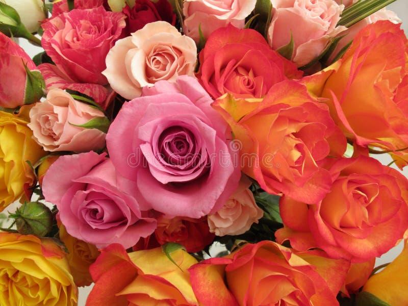 Rosen-Blumenstrauß-Anordnung lizenzfreie stockfotografie