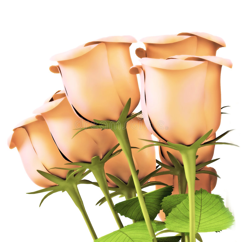 Rosen für große Feiern lizenzfreies stockbild