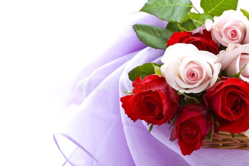 Rosen für Sie lizenzfreie stockfotos