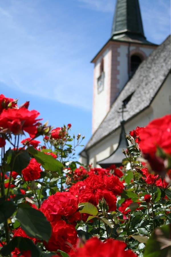Rosen im Garten der Kirche stockfoto
