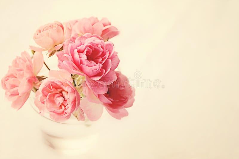 Rosen im Vase auf Rosa stockbilder