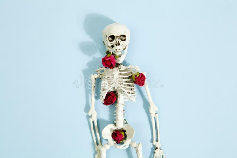 Rosen-Skelett lizenzfreies stockbild