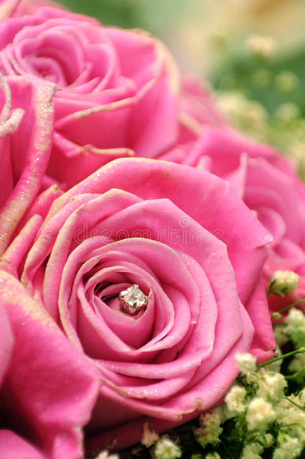 Rosen und Funkeln stockbild