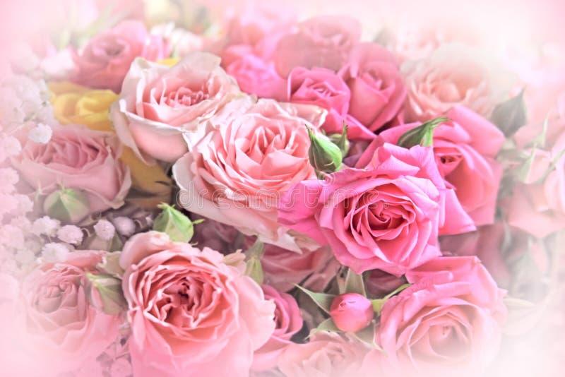 Rosenblumenstrauß auf weichem Hintergrund stockfotos