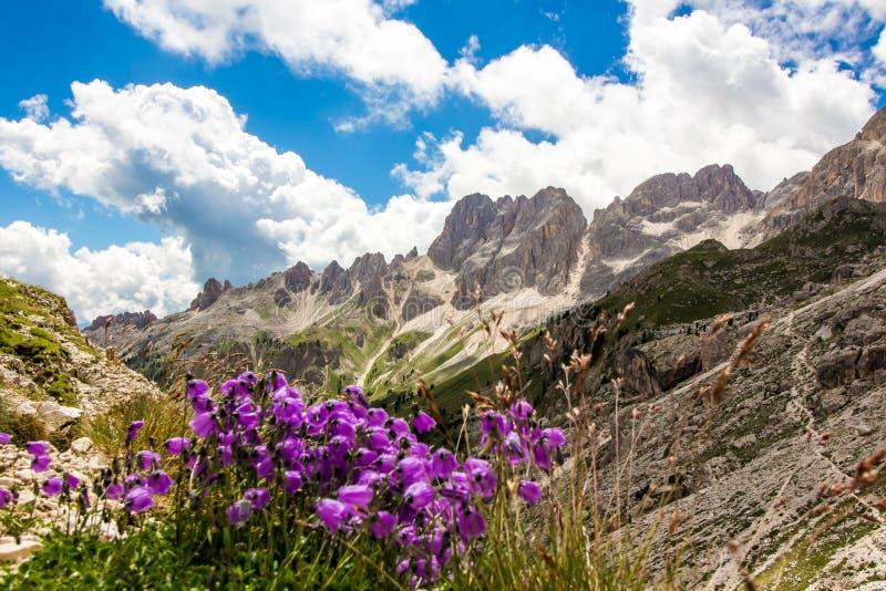 Rosengarten小组,意大利的看法在白云岩的 免版税库存图片