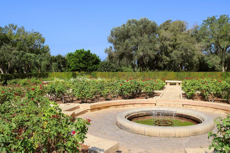 Roseraie, parc Ramat Hanadiv, Israël image libre de droits