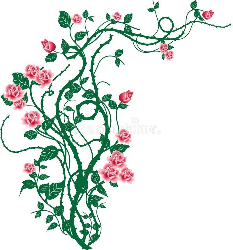 Roses_2 selvaggio royalty illustrazione gratis