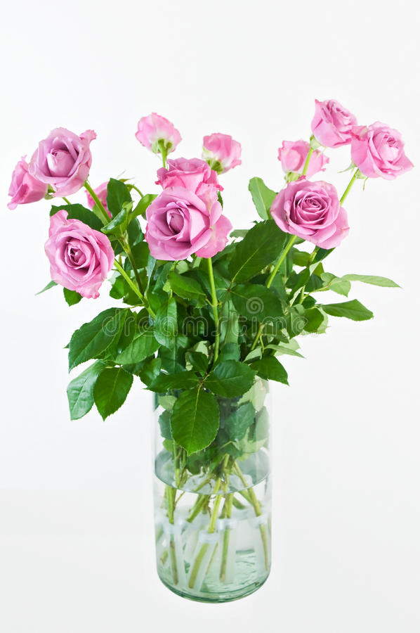Download Roses stock photo. Image of floral, vase, rose, pink - 23357984
