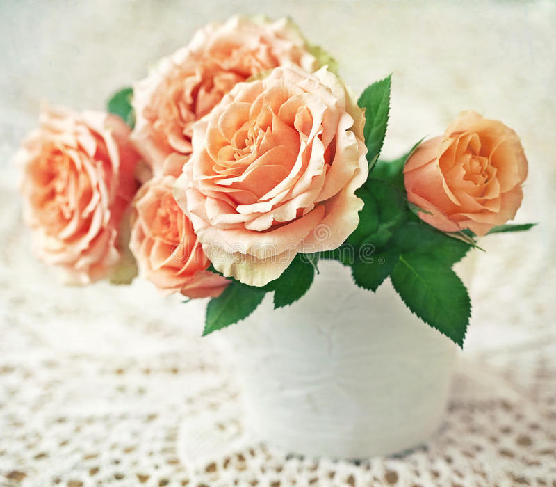 Download Roses Royalty Free Stock Images - Image: 26462639