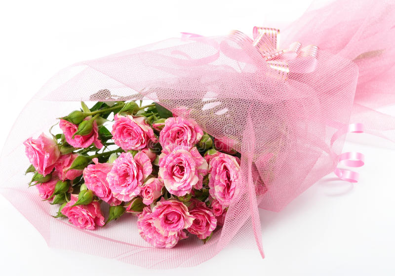 Roses. Bouquet of pink roses on a white background royalty free stock photos