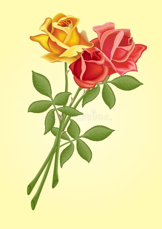 Download Roses stock vector. Image of flirting, beautiful, nature - 4490624