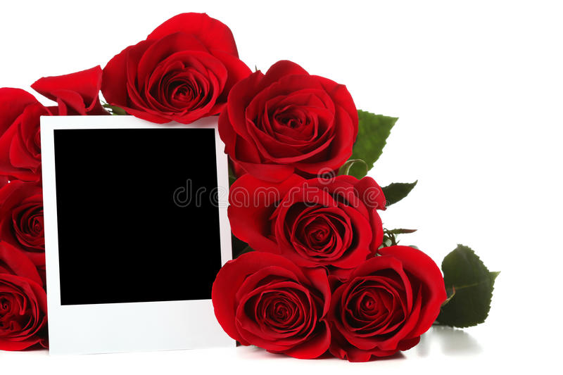 Roses avec la photo vide photographie stock