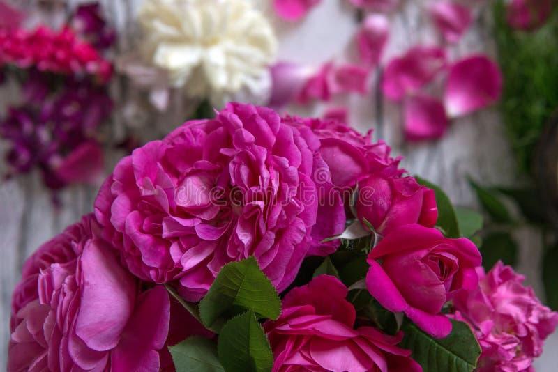 Roses roses avec un fond de vintage photographie stock