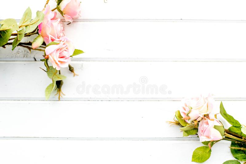 Roses on the background of white boards royalty free stock photo