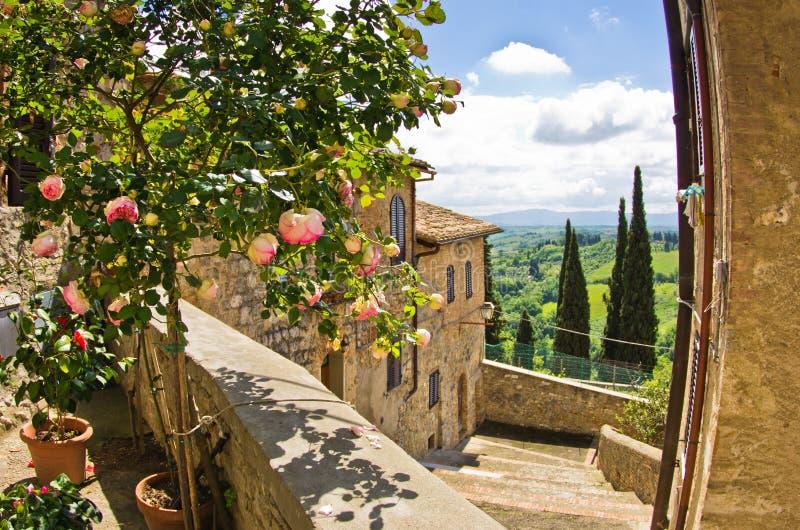 Roses on a balcony, cityscape of San Gimignano, Tuscany landscape in background stock image