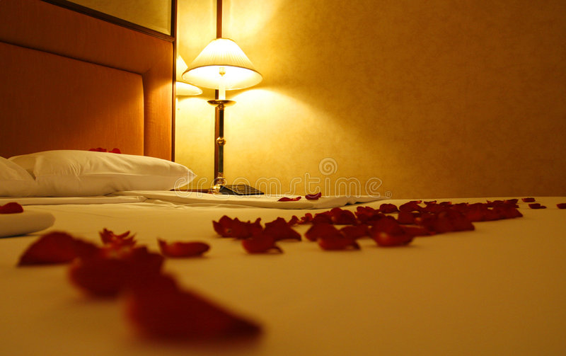 Download Roses and bed stock image. Image of beauty, couple, decoration - 6750441