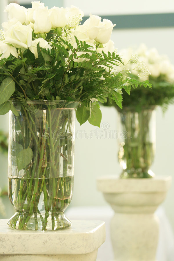 Roses blanches dans des vases photographie stock