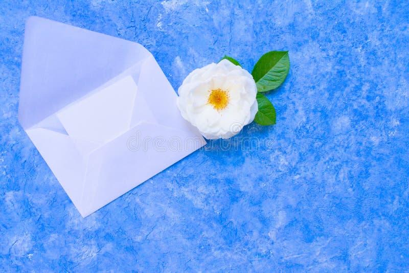 Roses blanches et une enveloppe ouverte sur un fond bleu-clair un calibre pour une carte Copiez l'espace photographie stock libre de droits