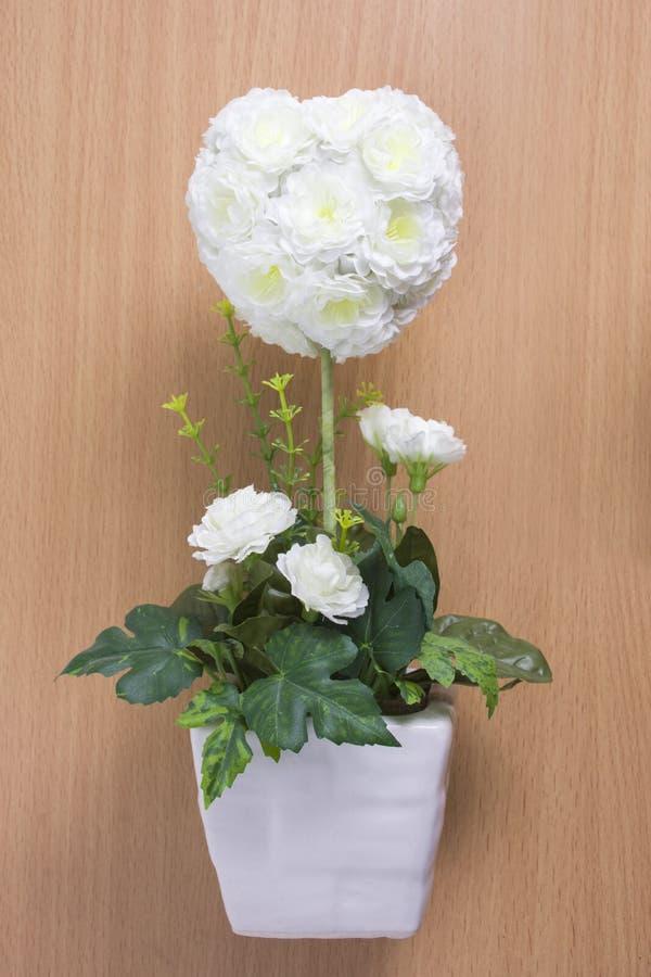 Roses blanches sur le bois photo stock