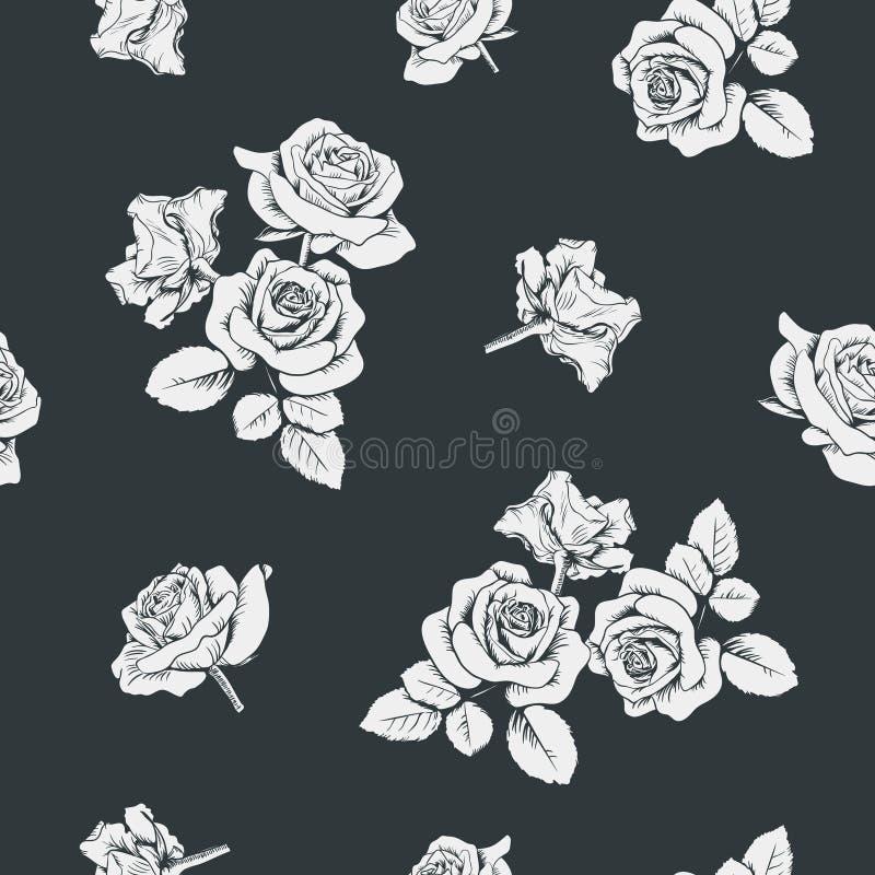 Roses blanches sur le fond noir Configuration sans joint Vecteur Illustartion illustration libre de droits