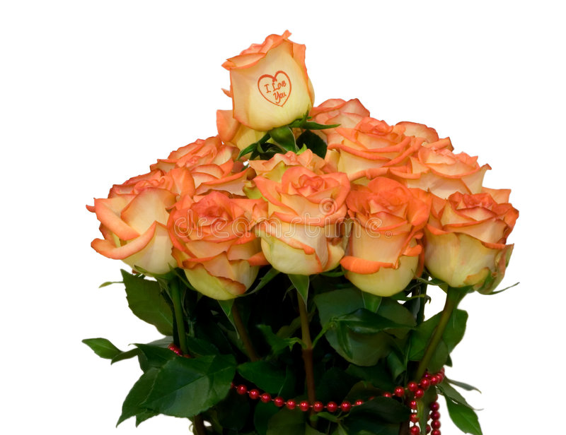 Roses bouquet royalty free stock image