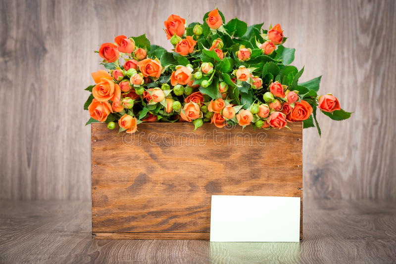 Roses in the box. On wooden background stock photos
