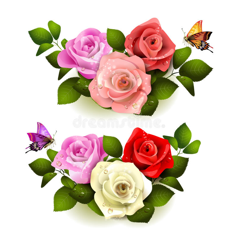 Roses with butterflies vector illustration