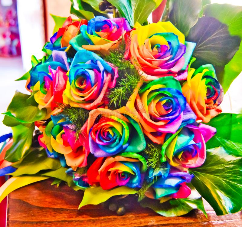 Roses colored with the colors of the rainbow stock photo