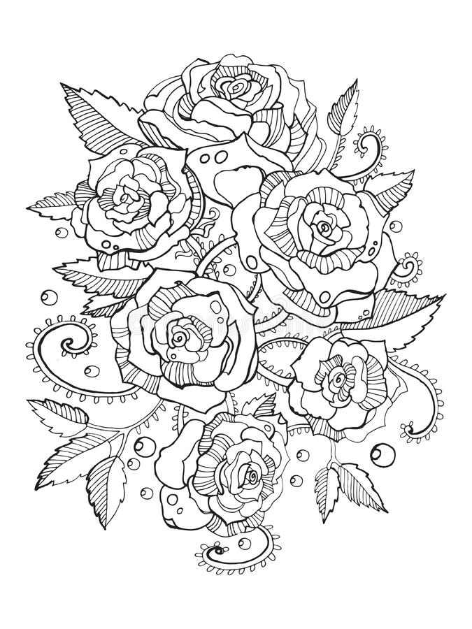 Roses Coloring Book For Adults Vector Stock Vector - Illustration of ...
