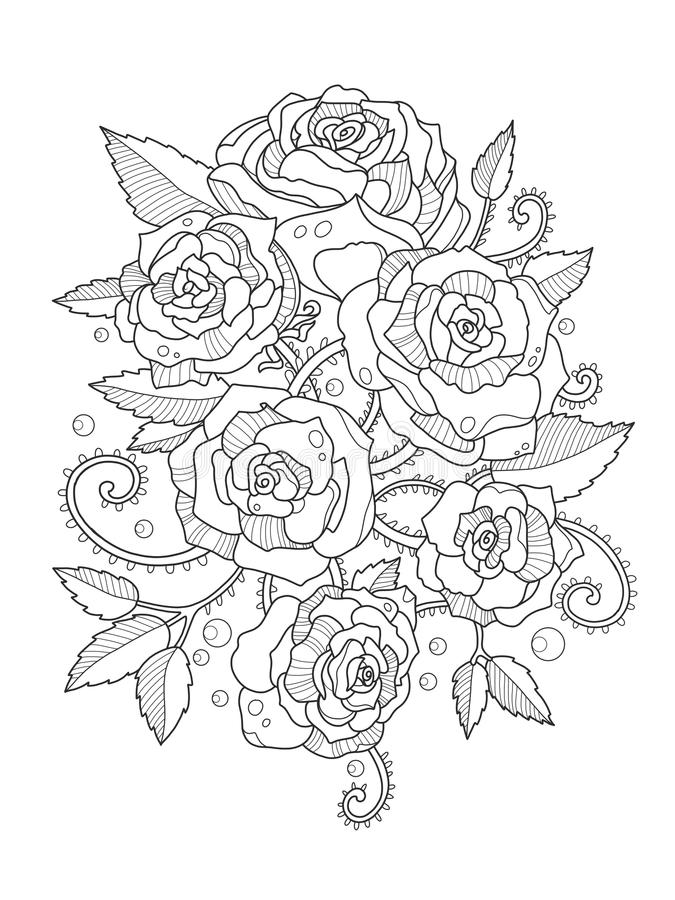 Roses Coloring Book For Adults Vector Stock Vector