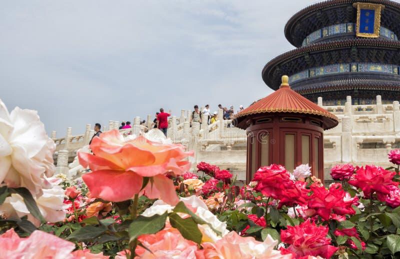 Roses décorant la façade du Hall de la prière pour la bonne récolte chez le temple du Ciel, Pékin, Chine, Asie images stock