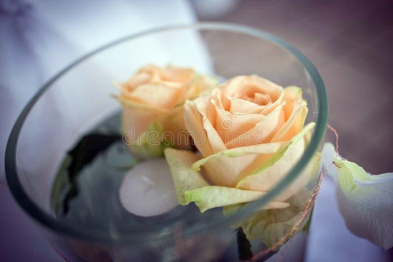 Roses dans la bougie image stock