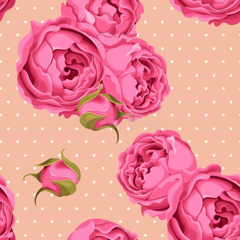 Roses de pivoine et point de polka sans couture illustration libre de droits
