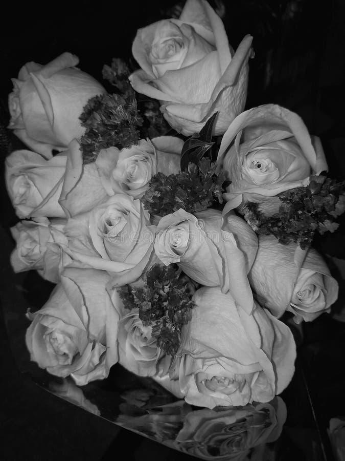 Roses de valentines images libres de droits