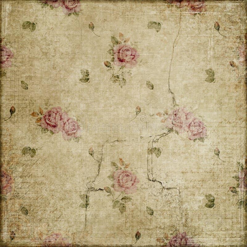 Roses de vintage grunges sur l'album beige à fond image stock