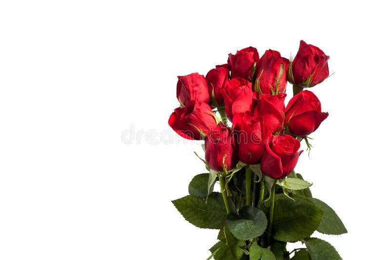 Roses douzaine rouges photo stock