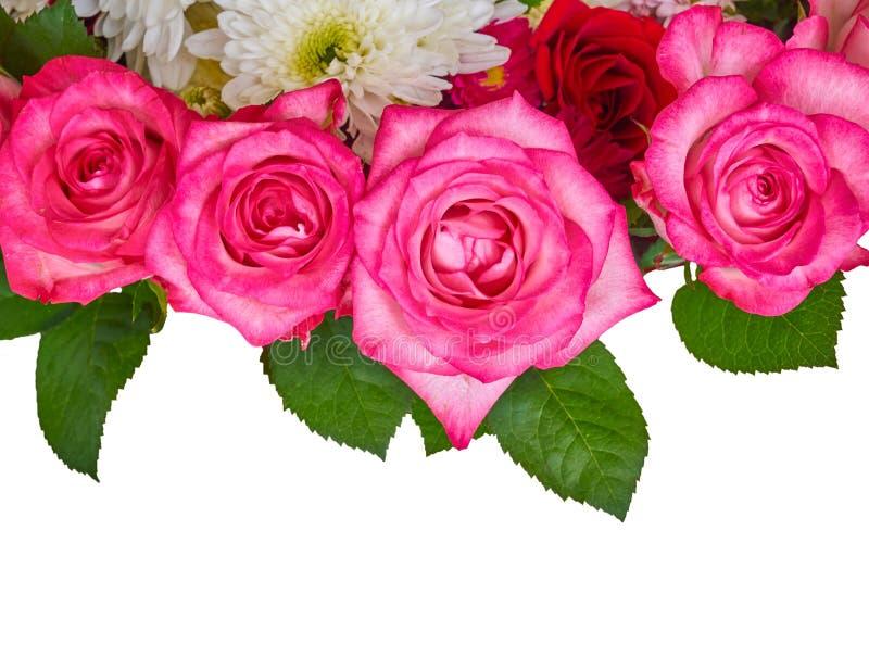 Roses et chrysanthemus sur le fond blanc images libres de droits