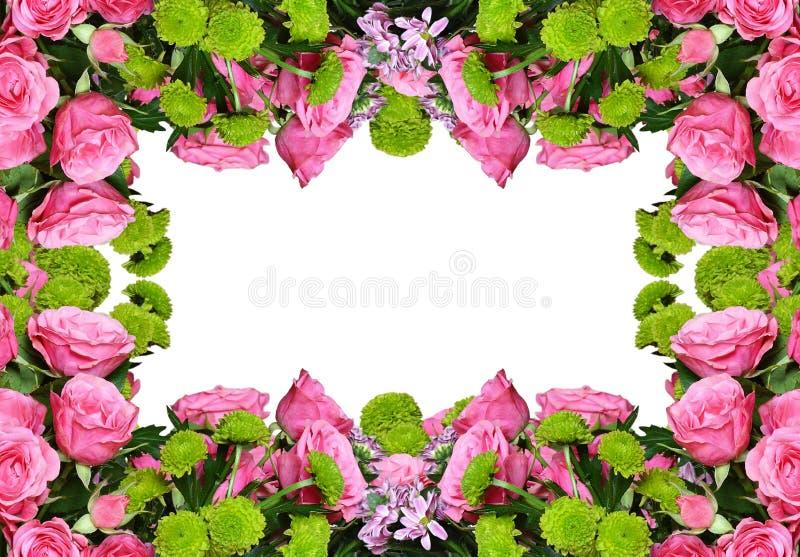 Roses et fleurs roses d'aster de cadre floral photos stock