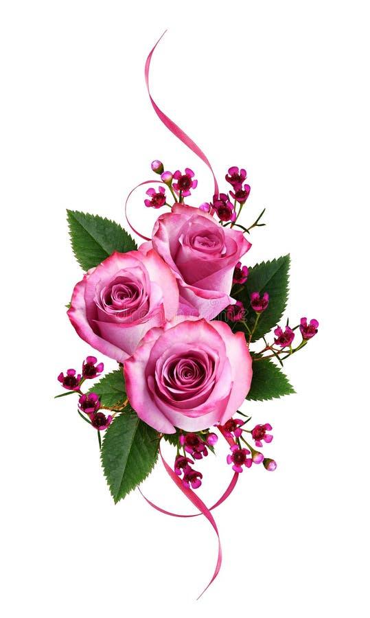 Roses et fleurs roses de chamelaucium avec les rubans de feuille et en soie verts dans un arrangement floral illustration stock