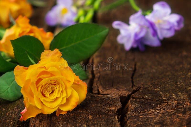 Roses et freesias sur le bois photographie stock